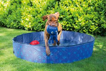 Doggy Pool Blau